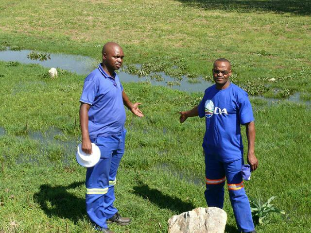 DA looks at leaking sewage pipes to target voters in Delmas by-elections