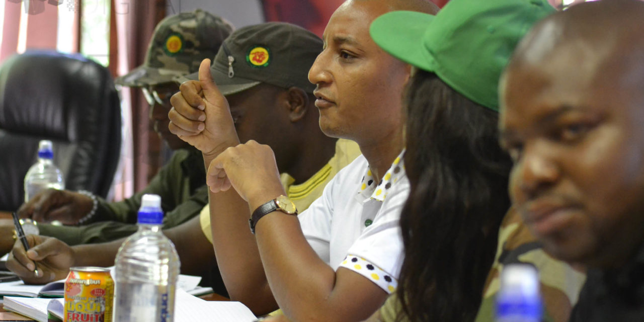Former ANCYL leaders accuse current ones of gate-keeping