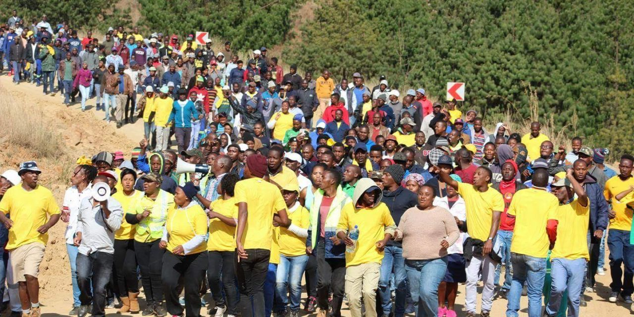 Marchers say Motsepe's mine is used to fund SANCO