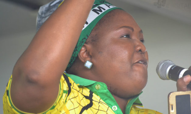 Nkangala ANC wants to wield axe in councils