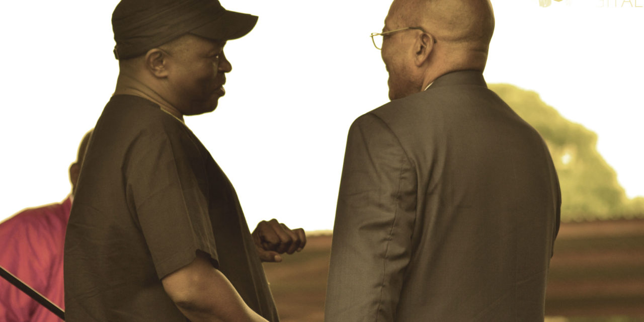 DD is oppossed to Zuma's 'remedy'