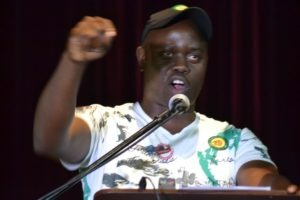 WATCH: Mpumalanga ANCYL leader speaks land grabs, Mpumalanga ANC succession race