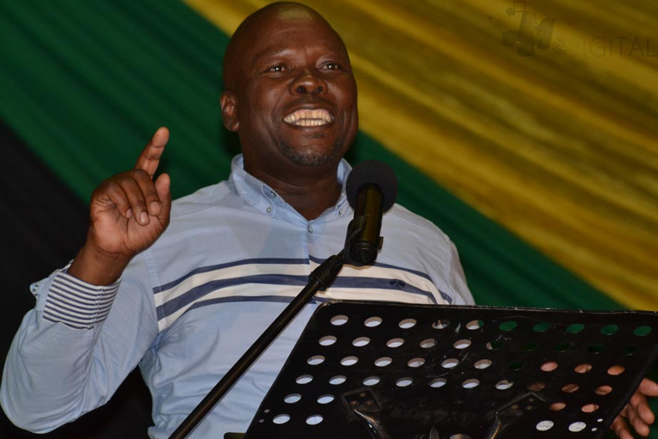 Sarel Mtsweni announces political comeback as Peter Nyoni's deputy