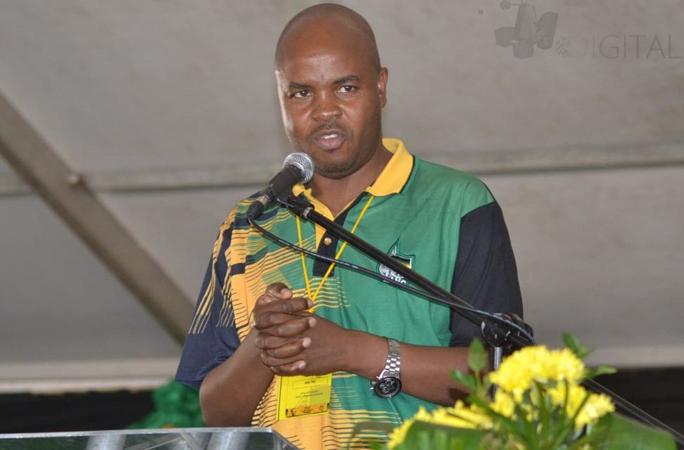 """PRET withdraws decision to contest election after """"fruitful"""" meeting with Mandla Ndlovu"""