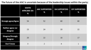Researchers find Ramaphosa has more Mpumalanga support than DD Mabuza