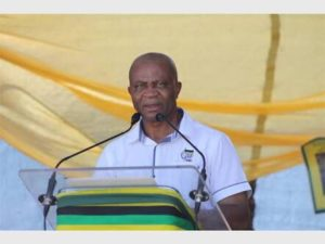 David Dube distances himself from comments Premier Mtsweni is DD Mabuza's lover
