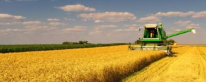 IDC on mission to unlock more Mpumalanga farming opportunities