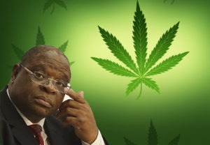 Justice Zondo feels zol should be legalised