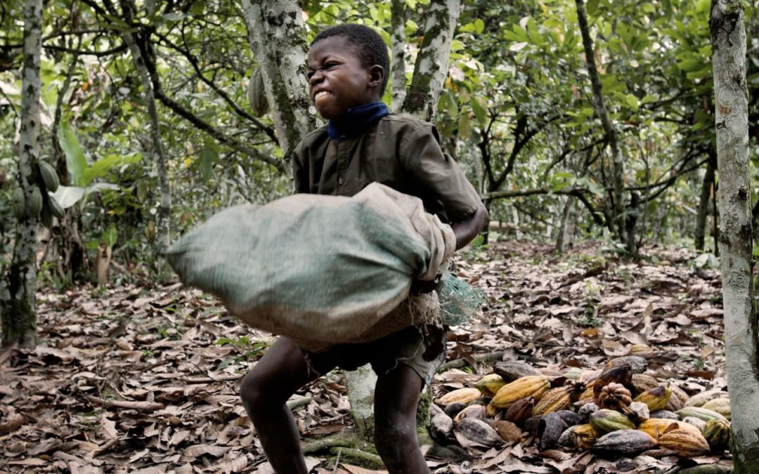 Your love for chocolate is contributing to child slave labour