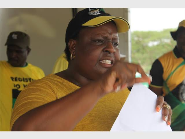 Mpumalanga ANC to have PGC after 2019 general elections