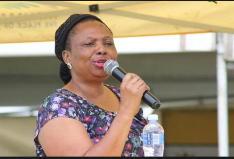 EFF, DA gang up against sports MEC Thandi Shongwe