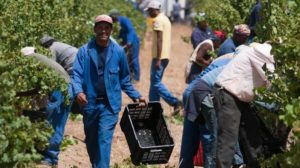 Land reform committee conducts oversight in Mpumalanga