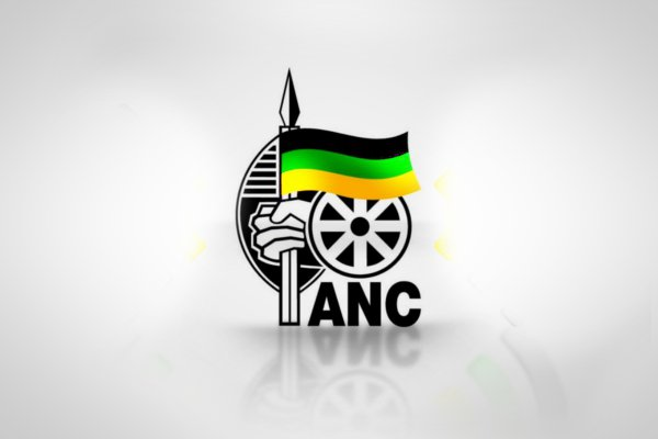 New call for NEC to dissolve Mpumalanga PEC