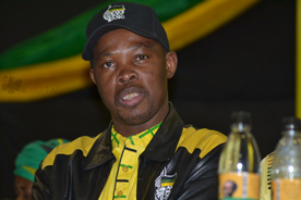 'Selfish leaders are dividing Gert Sibande ANC'