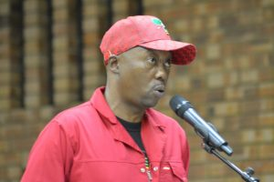 Covid-19: EFF lays charge against Ngrai Ngwenya