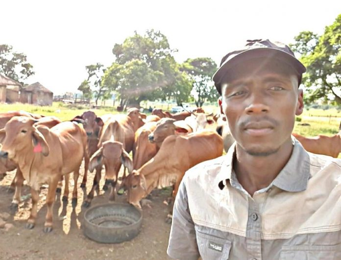New group of young graduates wants their hands dirty in farming