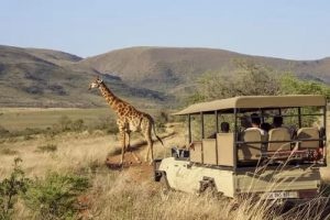 Nkomazi Game Reserve vs elders: Parties go to war over unresolved land claim