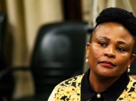 Mandla Msibi reported to Busisiwe Mkhwebane